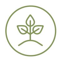About-Icon-Planting-Plans